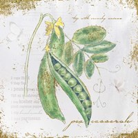 Garden Treasures X Fine-Art Print