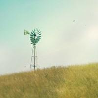 Farm Morning IV Square Fine-Art Print