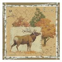 Deer / Elk Fine-Art Print