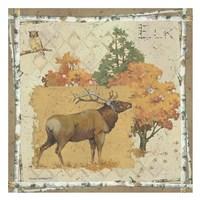 Elk Country Fine-Art Print