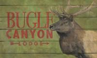Bugle Canyon Fine-Art Print