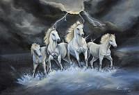Thundering Horses Fine-Art Print