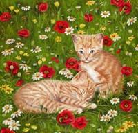 Ginger Kittens In Red Poppies Fine-Art Print