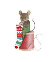 Mouse On Spool Fine-Art Print
