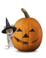 Halloween Mouse Fine-Art Print