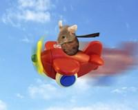 Flying Mouse Fine-Art Print