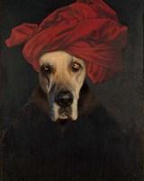Great Dane Fine-Art Print
