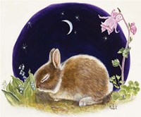 Sleeping Bunny Fine-Art Print