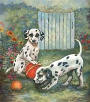 Dalmatians Fine-Art Print