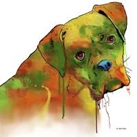 Boxer 2 Fine-Art Print