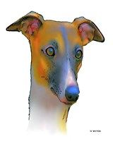 Greyhound 1 Fine-Art Print