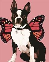 Butterfly Dog 3 Fine-Art Print