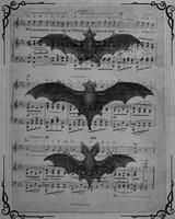 Vintage Bats 1 Fine-Art Print