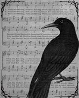 Vintage Crow Fine-Art Print