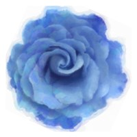 Blue Rose Fine-Art Print