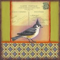 Carte Postale Bird 5 Fine-Art Print