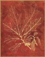 Golden Oak I Fine-Art Print