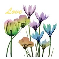 Floral Rainbow Love Fine-Art Print