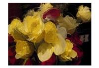 Roses 4 Fine-Art Print