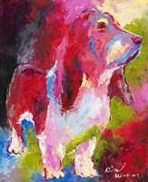 Red Head Fine-Art Print