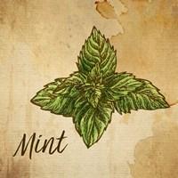 Mint on Burlap Fine-Art Print