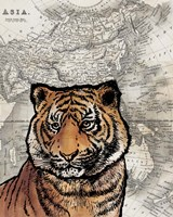 Asian Tiger Fine-Art Print