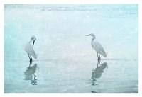 White Cranes Fine-Art Print