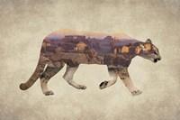 Arizona Mountain Lion Fine-Art Print