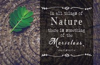 In all things of Nature Fine-Art Print