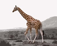 Pop of Color Lone Giraffe Fine-Art Print