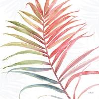 Tropical Blush VI Fine-Art Print
