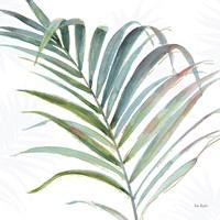 Tropical Blush V Fine-Art Print