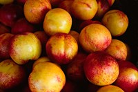 Plums at an Outdoor Market, Nice, France Fine-Art Print