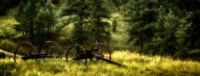 Old Wagon in the Black Hills, South Dakota Fine-Art Print