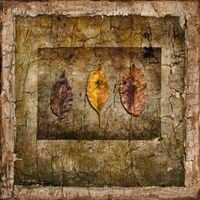 Autumn Leaves I Fine-Art Print