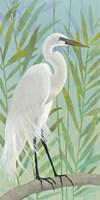 Egret by the Shore I Fine-Art Print