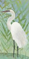 Egret by the Shore II Fine-Art Print