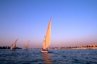 Beautiful Sailboats Riding Along the Nile River, Cairo, Egypt Fine-Art Print