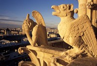 Gargoyles of the Notre Dame Cathedral, Paris, France Fine-Art Print