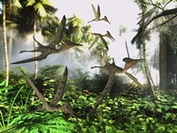 A flock of Pterodactylus reptiles fly over the jungle searching for their next meal Fine-Art Print