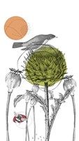 Graphite Tall Thistle And Pods Fine-Art Print