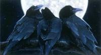 Corvus Moon Fine-Art Print