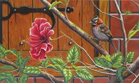The Sparrow Who Visit Your Window Fine-Art Print