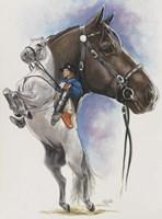 Lippizaner Fine-Art Print