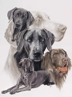 Weimaraner and Ghost Fine-Art Print