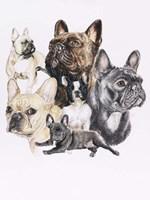 French Bulldog Fine-Art Print