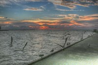 Key West Sunrise Gulls and Pier Fine-Art Print