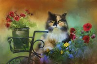 Calico In The Garden Fine-Art Print