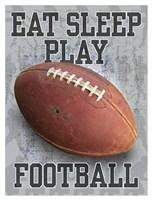Eat Sleep Play Football Fine-Art Print