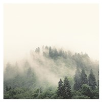 Smoky Mountains Fine-Art Print